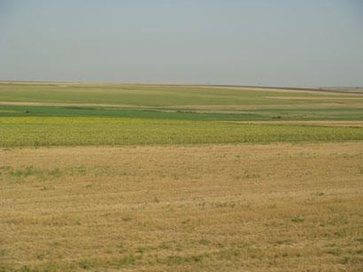 Felder und Weite in Rumänien