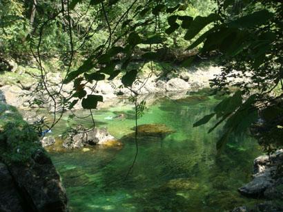 Erlebnis Scuben in der Traun, Oberösterreich