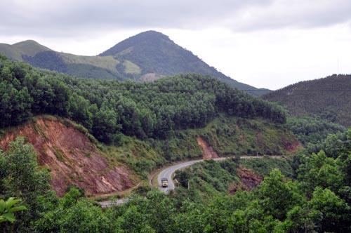 Bild: Waldlose Flächen in Vietnam 40 Jahre nach dem Einsatz von Agent Orange