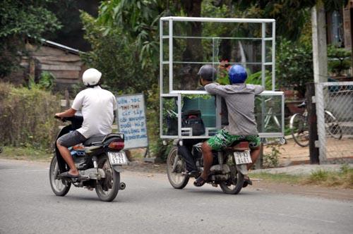 Bild: Vitrine am Moped
