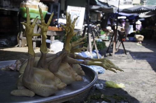 Bild: Hühner am Markt von Chau Doc