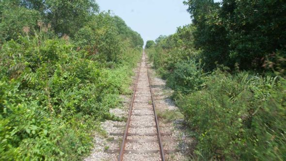 Maeklong Railway durch den Dschungel