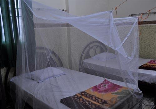 Bild: Rechteckiges Mückennetz in einer einfachen Unterkunft in Vietnam