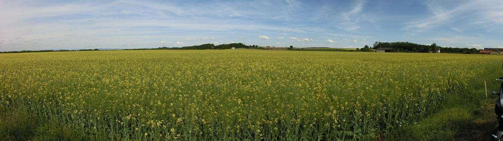 Bild: Panorama erstellt mit Digitalkamera Casio Exilim EX-ZR200
