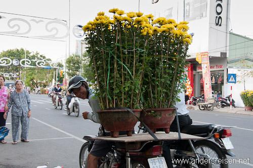 Bild: Einmalige Eindrücke von einer Vietnam-Reise während des Tet-Fests