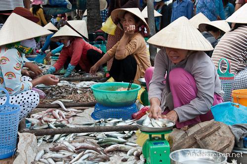 Bild: Fischmarkt in Mui Ne - Vietnam