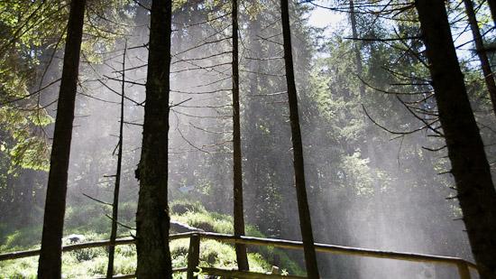Bild: Gollinger Wasserfall