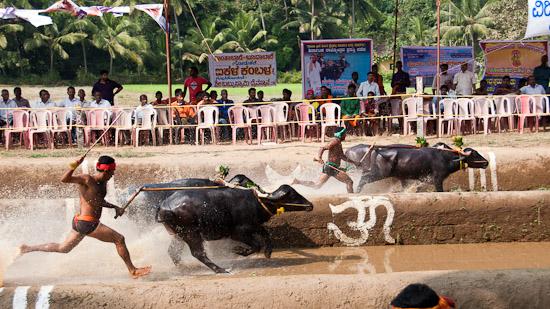 Bild: Zieleinlauf Kambala in Ikala Bava