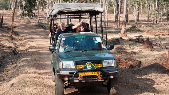 Bild: Jeep im Nagarhole Tiger Reservat