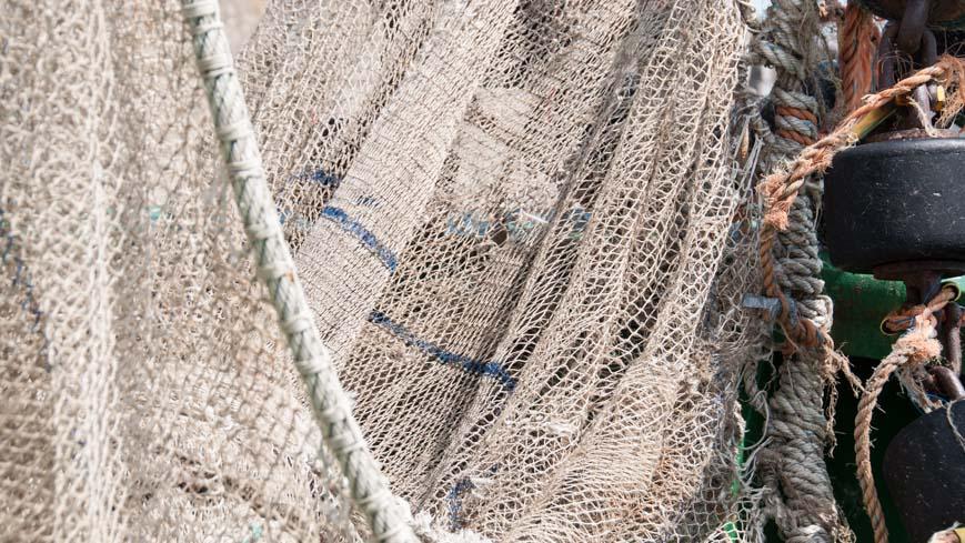 Bild: Fischernetz