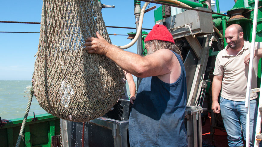 Bild: Krabbenfischerboot Netz
