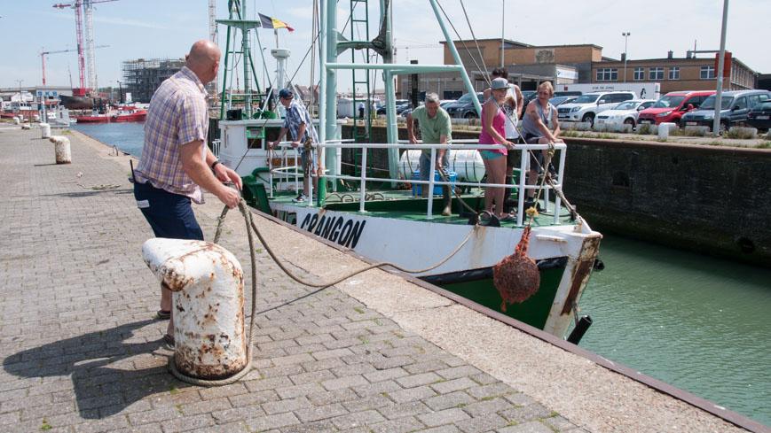Bild: Crangon in der Schleuse im Hafen von Ostende