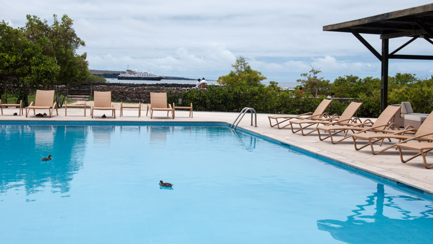 Bild: Pool im Finch Bay Hotel in Puerto Ayora - Galapagos Inseln