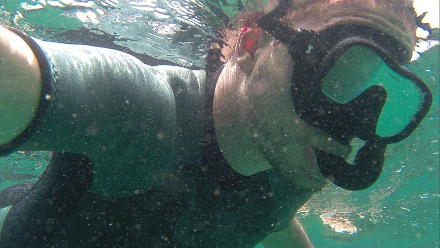 Bild: Schnorcheln auf den Galapagosinseln