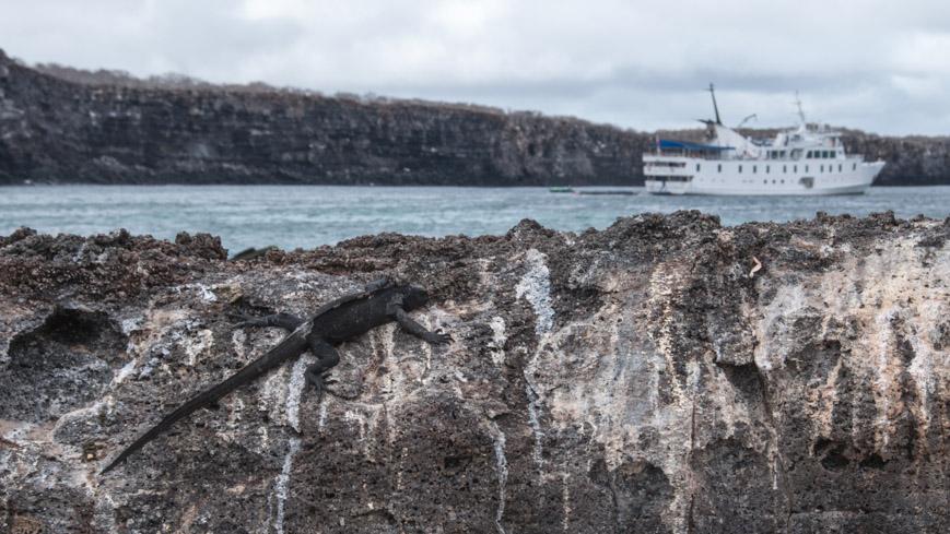 """Bild: Yacht """"La Pinta"""" im Vulkankegel der Insel Genovesa"""