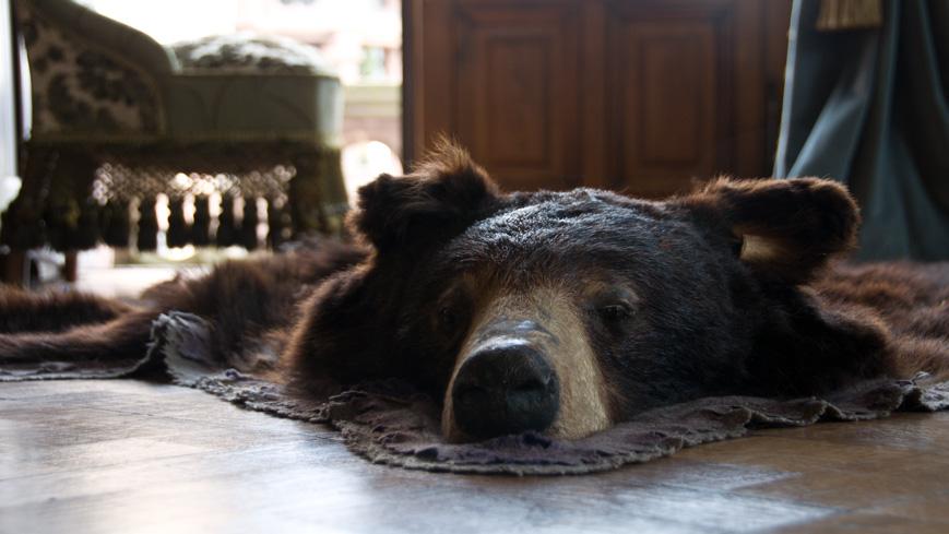 Bild: Bären-Teppich im Schloss Drachenburg
