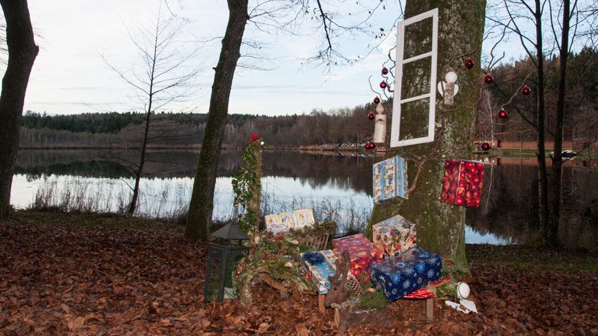 Bild: Advent am Holzöstersee