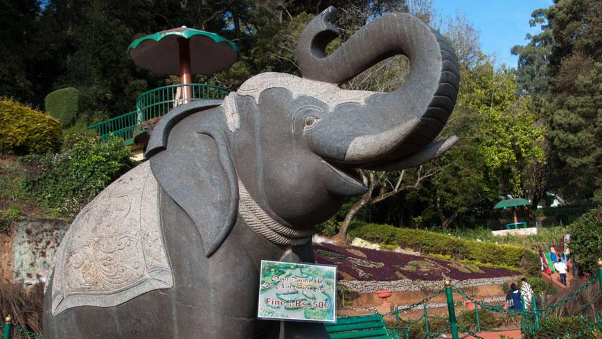 Bild: Botanical Garden in Ooty