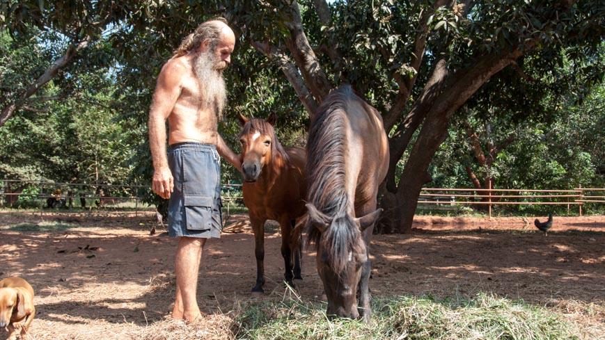 Bild: Achilles in Auroville