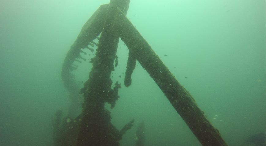 Bild: Wrack der MV Mars in der Nähe von Havelock