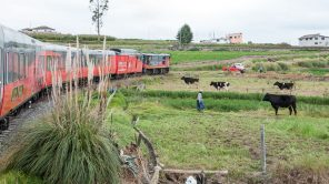 Ein Tag im Tren Crucero: Von Riobamba nach Latacunga (2)