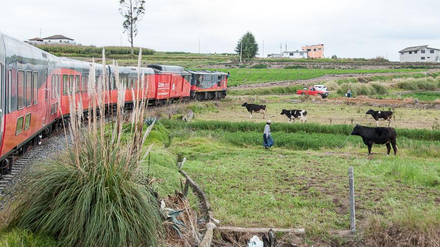 Bild: Tren Crucero in Ecuador