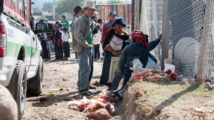 Bild: Hühner am Markt in Otavalo, Ecuador