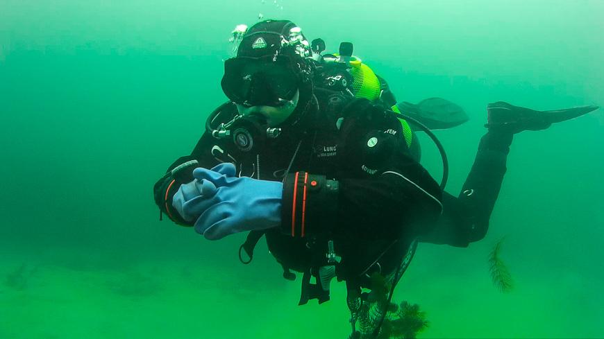 Bild: Markus beim Tauchen im Pichlinger See