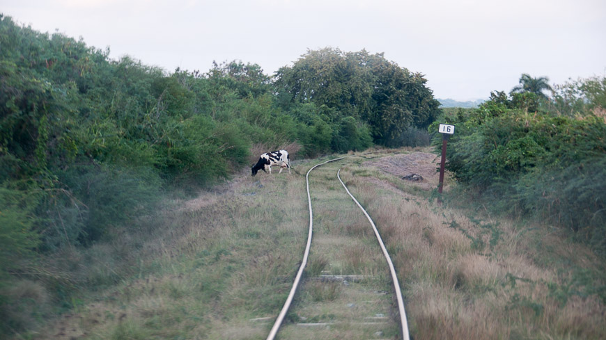 Bild: Zug im Valle de los Ingenios