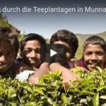 [Audio-Slideshow] Wanderung durch die Teeplantagen in Munnar