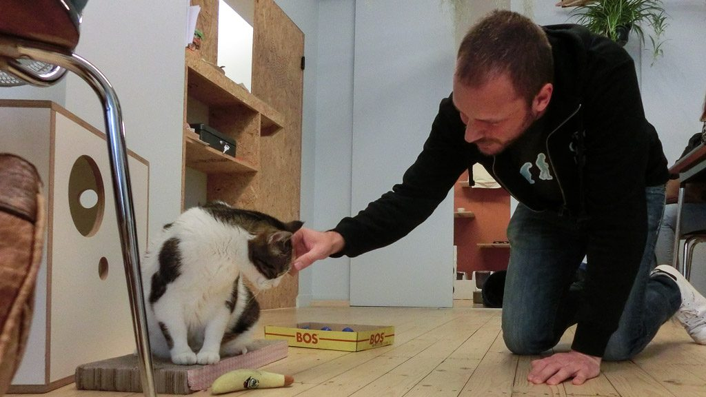 Gerhard im Cat Café in Gent