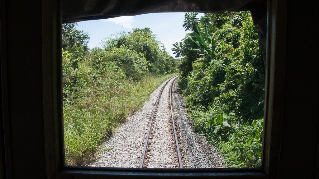 Dschungel-Linie Malaysia