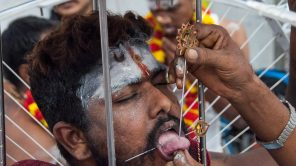 "Thaipusam in Singapur: ""Fest der Schmerzen"" in Little India"