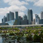 [7ways2travel] Ab auf die Insel Singapur: Klischees und Reisegefühl