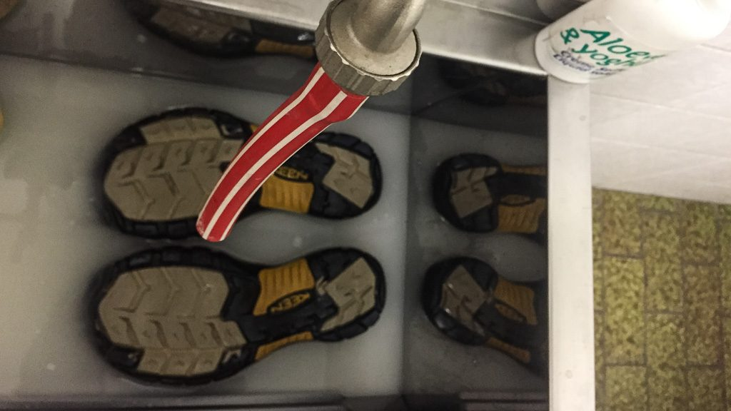 Keen Sandalen-Pflege im Wasserbecken