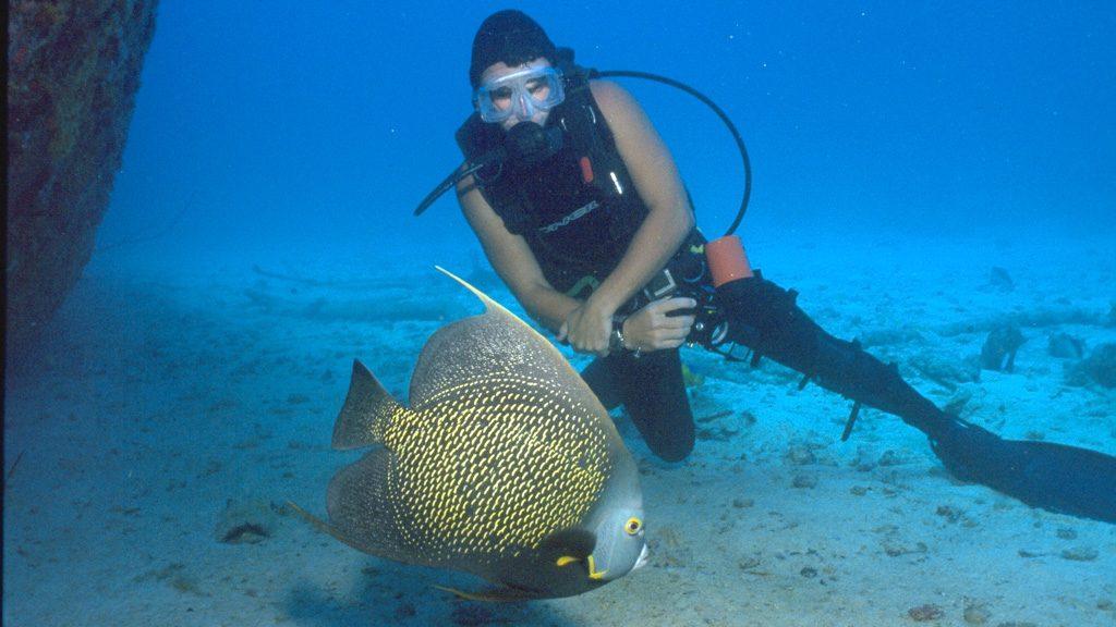 Tauchen auf Aruba - Bild: (c) Aruba Tourism Authority