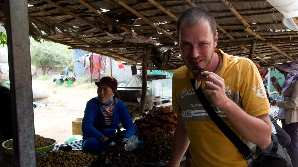 Vogelspinnen in Skun, Kambodscha