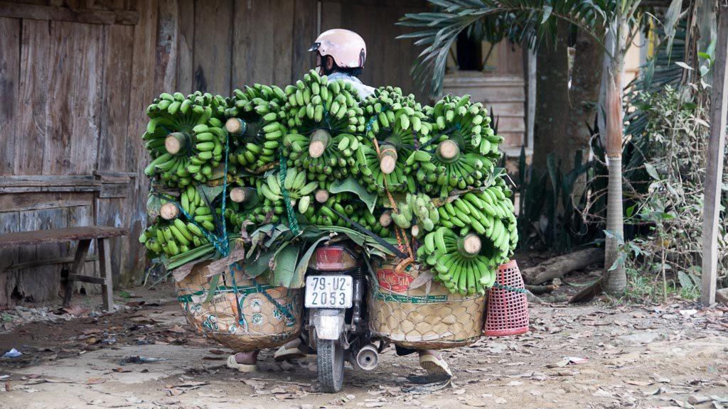 Mit Bananen überfülltes Moped in Vietnam