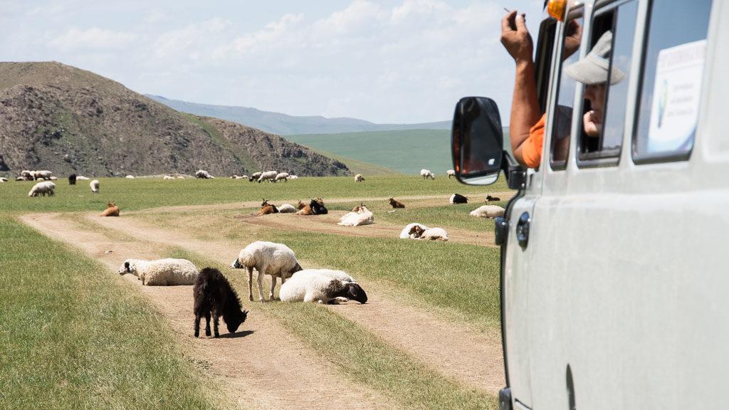 Beste Reisezeit Mongolei