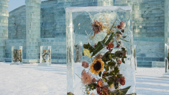 Eisblumen in der Ice & Snow World in Harbin