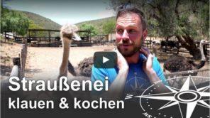 Straußenei klauen und kochen - Südafrika Challenge (Video)