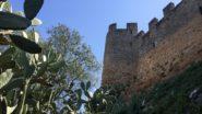 Castelo del Almourol