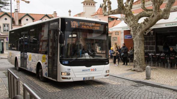 Scotturb Bus 434 Bahnhof Sintra - Palacio Pena