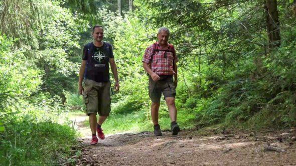 Ausflugstipp: Wandern Bayerischer Wald - Bierfernwanderweg