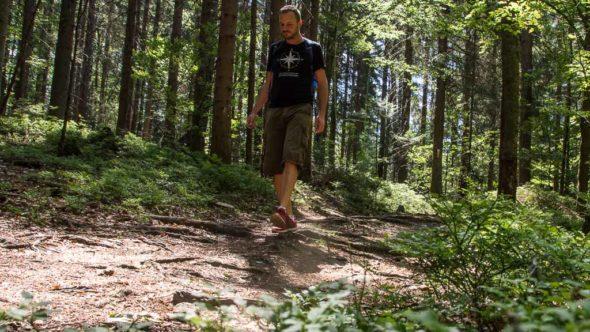 Bahnwandern Nationalpark Bayerischer Wald
