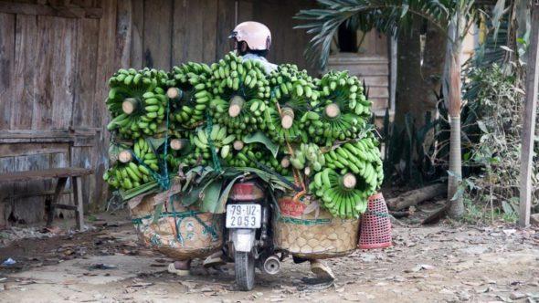 Vietnam Reisetipps und Reiseberichte im Reiseblog