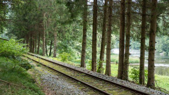 Waldbahn in Bayerisch Kanada im Bayerischen Wald